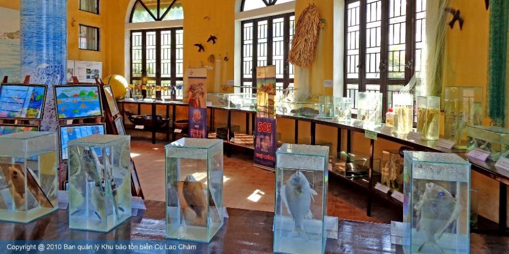Trung tâm Truyền thông BTB CLCChào mừng kỷ niệm 5 năm Khu dự trữ sinh quyển Cù Lao Chàm 26/5/2009-2014